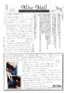 アライブメール27.11表2